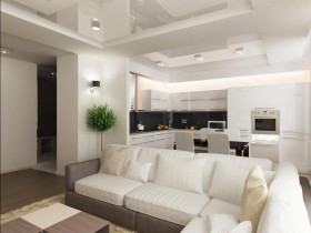 Черно-белая кухня, совмещенная с гостиной комнатой