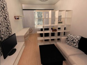 Combined living with bedroom