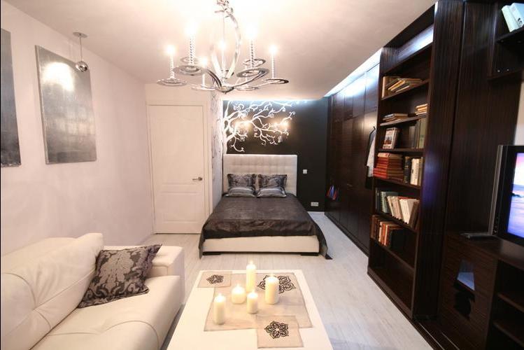 Разделение зон в однокомнатной квартире на спальню и гостиную фото