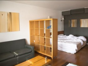 Shelf, separating combined living with bedroom