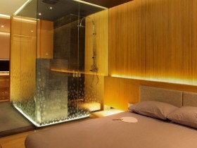Modern bedroom with shower