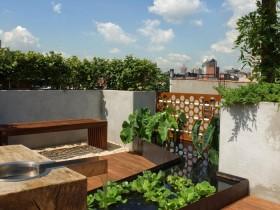 Landscape design garden