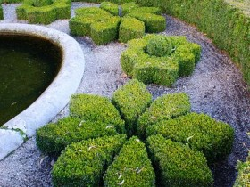 The style of the garden with topiary