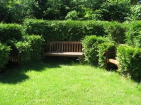 Садовая лавочка рядом с топиари