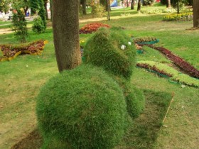 Topiary in the form of a cat