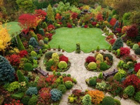 Beautiful garden with trimmed bushes