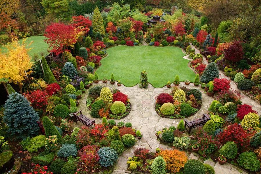 Как сделать красивый сад у себя на  650