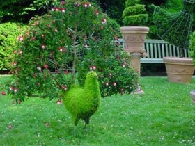 Interesting topiary in the country
