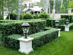 Bog ' dizayni Topiary