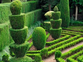 Topiary cottage in the French style