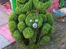 Creative topiary in the country