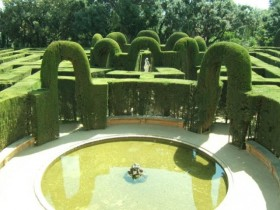 A regular garden with topiary