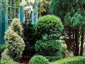 Топиари в саду
