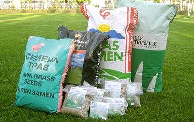 Семена трав для газона