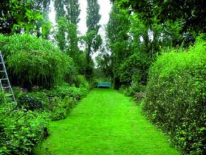 Травяные садовые дорожки на даче