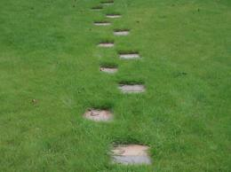 Combined garden path: grass with natural stone