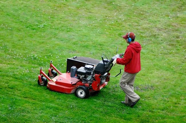 Стрижка газона при помощи газонокосилки