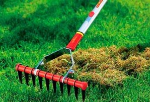 How to implement the search, powder and lawn aeration?