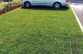 Использование газонной решетки