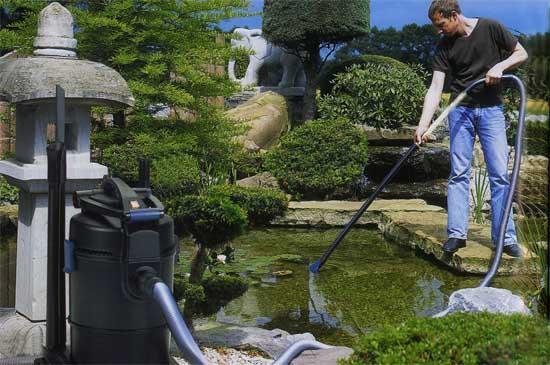 Уход за прудом в саду своими руками