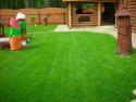 Идеи украшения газона на даче