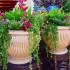 Как выбрать уличные вазоны для цветов или сделать своими руками + 35 фото идей