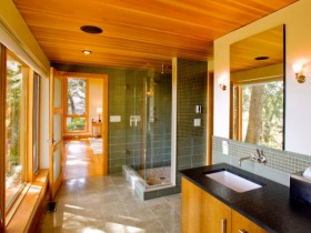 "Bathroom ""under the tree"" in the style of modernism"