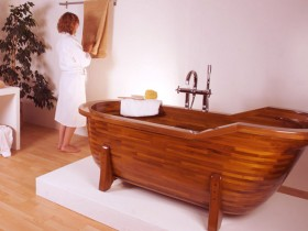 Stylish wooden bathroom