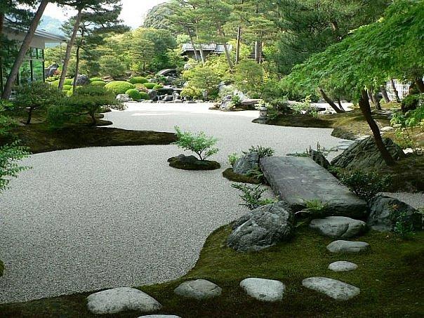Растительный мир японского каменного сада