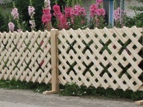 Decorative fence with their hands