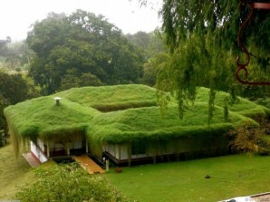The green roof: the essence, advantages, the deficiencies and the necessary materials to create